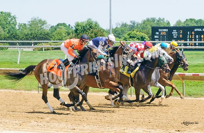 Quality Interest winning at Delaware Park on 6/15/17