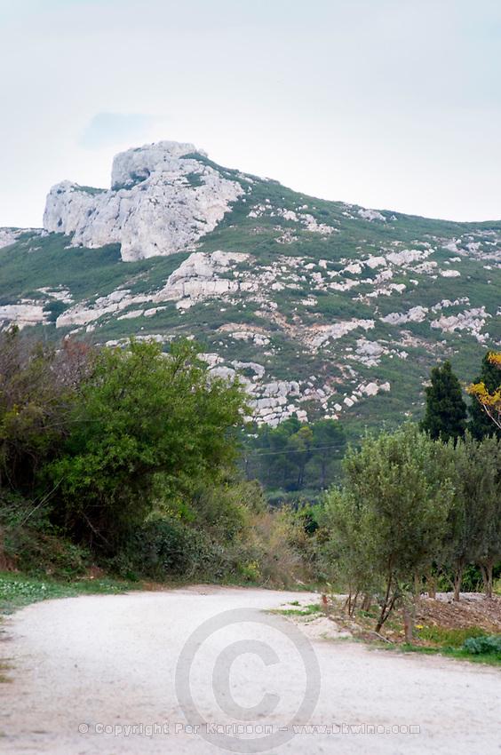 View over the Les Alpilles mountain range. Moulin Mas des Barres olive mill, Maussanes les Alpilles, Bouches du Rhone, Provence, France, Europe