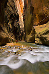 Hikers and cascade in the Virgin River Narrows, Zion National Park, Utah