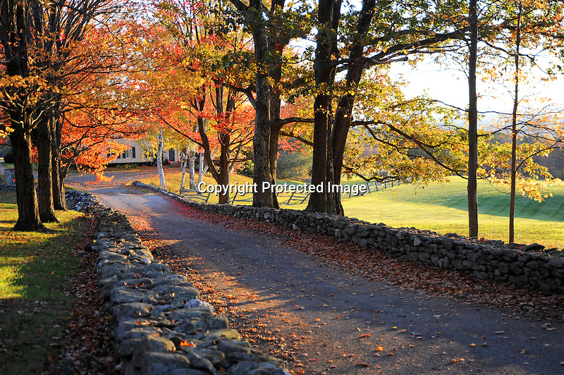 Homestead and Driveway with Fall Colors in Walpole, New Hampshire USA