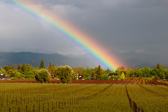 Rainbow over St. Helena