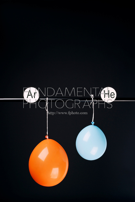 HELIUM AND ARGON FILLED BALLOONS<br /> (Variations Available)<br /> The Two Balloons Are Filled To The Same Volume<br /> After 13.5 hours the helium filled balloon is smaller than the Argon filled balloon. Helium effuses out of the balloon faster than Argon.  Light atoms or molecules effuse through the pores of the balloons faster than heavy atoms or molecules.