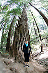 Allison in front of a giant Redwood in Muir Woods National Park in Mill Valley, California. (Photo by Brian Garfinkel)