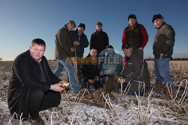 IFA Membera and Potatoe producers examine the destruction of the frost and snow on the potatoe crop in the meath area..Thomas Carpenter IFA Vice Chairperson examinng the potatoes..Photo: Fran Caffrey/ Newsfile.ie.Press release from IFA.NO REPO FEE on picture once used with IFA story..