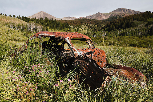 An old bullet riddled car sits among wildflowers in a meadow below the Lima Peaks in southwest Montana