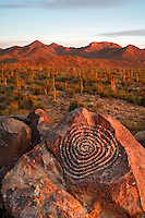 Rock Art in Saguaro National Park, Tucson Mountain District or Saguaro West, Tucson, Arizona