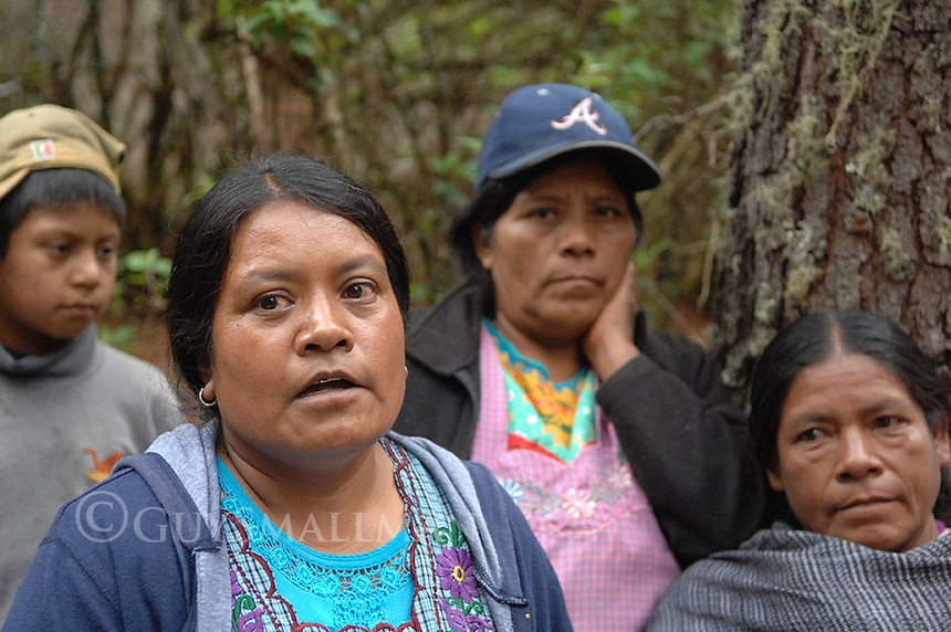 Mexican Indigenous pressure group the 'Consejo indigena popular de Oaxaca Ricardo Flores Magon' (CIPO-RFM) hold an international gathering in the village of San Isidro Aloapam to highlight problems being faced by local people. The village was in dispute with a nearby town called San Miguel over logging the local forest. Villagers had been shot at by paramilitaries protecting the lumberjacks. Unlike San Isidro which is politically represented by CIPO-RFM, San Miguel is under the control of the rightwing PRI party. The gathering included a visit to the damaged forest and an international conference. The official title of the event was 'Encuentro por la defensa del bosque y la vida comunitaria'.  Villagers recount their experiences to visiting international activists.