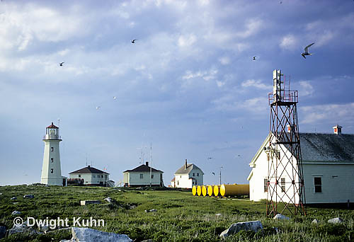 MC05-002b  Machias Seal Island - Bay of Fundy, island, lighthouse and buildings