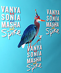 Yhe Broadway Opening Night Performance after party for  'Vanya and Sonia and Masha and Spike' at the Gotham Hall in New York City on 3/14/2013.