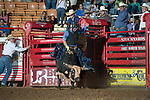 Caleb Christian attempts 608 of Stockyards Pro Rodeo during first round of the Fort Worth Stockyards Pro Rodeo event in Fort Worth, TX - 8.9.2019 Photo by Christopher Thompson