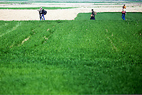 Pictured: Migrants walk in the fields to reach Idomeni Thursday 03 March 2016<br />Re: Migrants have closed off the railway track at the Greek Fyro Macedonian border in Idomeni, Greece,