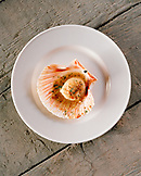 ITALY, Verona,  close-up of scallop served on plate