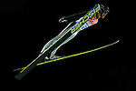 Roman Koudelka of Czech Republic jumps during the Men's Normal Hill Individual of the 2014 Sochi Olympic Winter Games at Russki Gorki Ski Juming Center on February 9, 2014 in Sochi, Russia. Photo by Victor Fraile / Power Sport Images