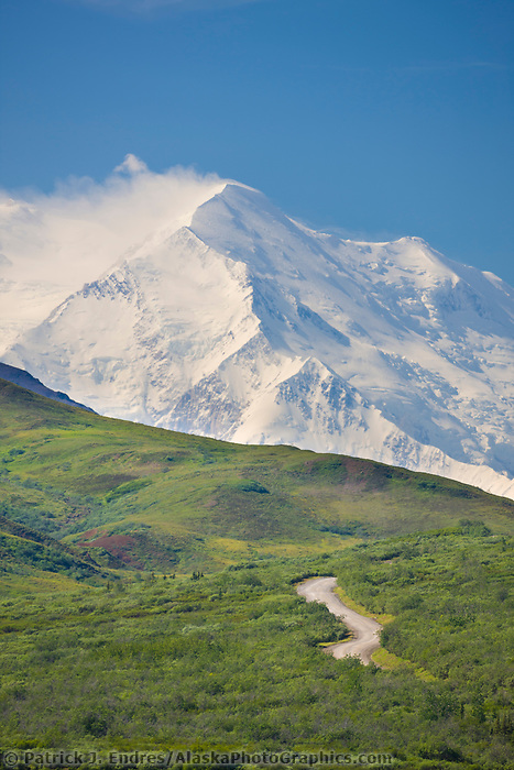 Tour bus travels the park road as Denali, North America's largest peak looms in the distance. Denali National Park, Interior, Alaska.