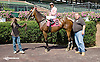 Northwood Bully winning at Delaware Park on 9/3/14