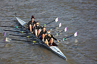 Crew: 114    Reading University (A Le Bars)  W 4x-  Acad ChampRDU (A)<br /> <br /> Fours Head of the River 2018<br /> <br /> To purchase this photo, or to see pricing information for Prints and Downloads, click the blue 'Add to Cart' button at the top-right of the page.