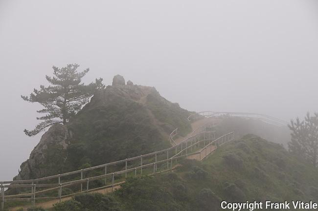 Muir Beach Overlook in Fog at Golden Gate National Recreation Area