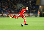 UEFA European Championship at Cardiff City Stadium - Wales v Cyprus : <br /> David Cotterill of Wales.