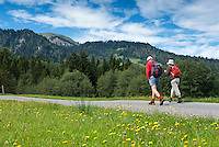 Austria, Vorarlberg, Sibratsgfaell: popular hiking and mountainbike region at Bregenzerwald | Oesterreich, Vorarlberg, Sibratsgfaell: bei Urlaubern beliebtes Ziel fuer Wanderungen und Mountainbike-Touren im Bregenzerwald