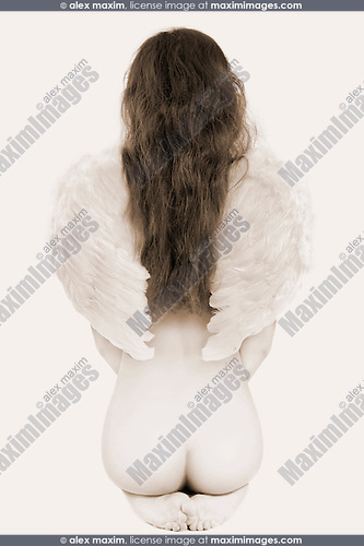 Young beautiful woman with white angel wings sitting with her back to the camera