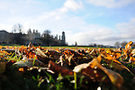 26th November - Autumn in Burghley Park