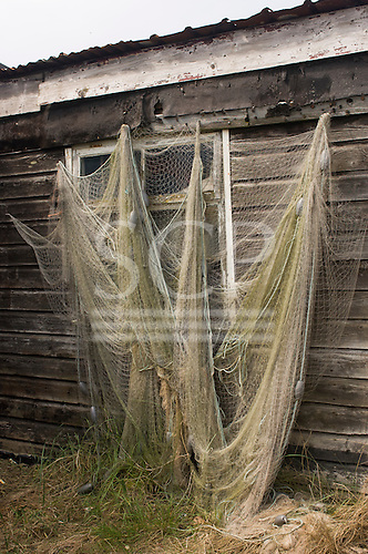 Orford, Suffolk; weathered fisherman's hut with fishing nets hanging up to dry