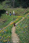 Dog (Muffy), and family walking along path in the Russian Gulch State Park, Mendocino, California