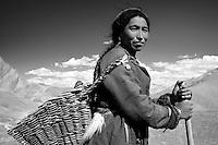 Femme du Ladakh, rencontrée sur le trek du Zanskar.
