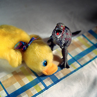 A duckling and a dinosaur - toys in one of the family cells at Alcala de Guadaira prison. More than 200 women live with their children in Spanish jails. Children can live with their mothers in prison up to the age of three.