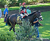 Bashart before The Kent Stakes (gr 3) at Delaware Park on 9/20/14