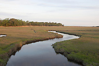 Salt Marsh creek; Dias Creek, high tide; NJ, Cape May Co.