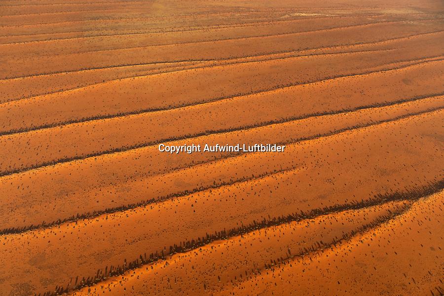 Kalaharie Dünen: NAMIBIA, AFRIKA, 10.11.2019: Kalaharie Dünen