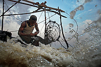 A fishermen removes some small fish from a fish trap attached to a wooden scaffold at Boyoma Falls (known locally as Wagenia Falls). To keep his hands free as he takes the fish out he puts them in his mouth. This is the last of seven cataracts below which the Lualaba River becomes the Congo. For generations members of the Wagenia tribe have built and maintained these structures in the same manner described by Henry Morton Stanley, after whom the falls were also once named, during his navigation of the Congo in 1874-77.