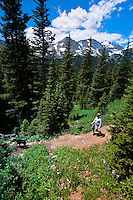 USA-Colorado-Fourth of July Trail near Nederland