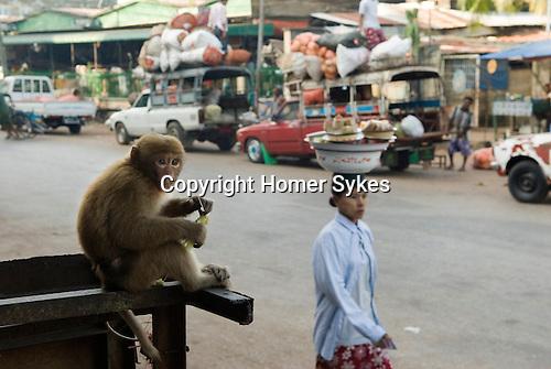Mawlamyine Moulmein.Early morning street market Myanmar Burma 2008