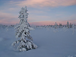 Sunset in the Norwegian mountains, Rondane and Venabygdsfjell