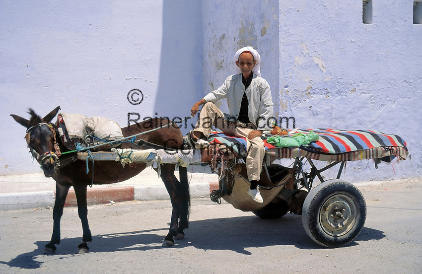 Tunisia, Djerba: local with donkey cart