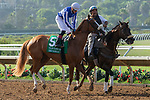 DEL MAR, CA  AUGUST 4:  #5 Tisbutadream, ridden by Tyler Conner, in the post parade before the Yellow Ribbon Handicap (Grade ll) on August 4, 2018 at Del Mar Thoroughbred Club in Del Mar, CA.(Photo by Casey Phillips/Eclipse Sportswire/ Getty Images)