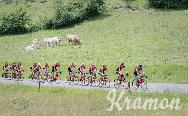 watching the race go by...<br /> <br /> Stage 6: Le parc des oiseaux/Villars-Les-Dombes &rsaquo; La Motte-Servolex (147km)<br /> 69th Crit&eacute;rium du Dauphin&eacute; 2017