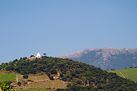 Vineyard. La Salette hilltop chapel. Banyuls sur Mer, Roussillon, France