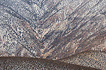 Land detail, Aguereberry Point, Death Valley National Park, California