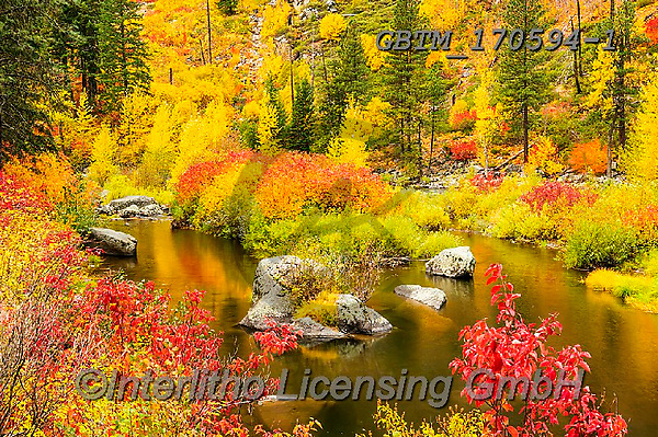 Tom Mackie, LANDSCAPES, LANDSCHAFTEN, PAISAJES, photos,+America, American, Americana, North America, Pacific Northwest, Tom Mackie, Tumwater Canyon, USA, Washington, Wenatchee Natio+nal Forest, autumn, autumnal, colorful, colourful, fall, horizontal, horizontals, inspiration, inspirational, inspire, landsc+ape, landscapes, natural, nature, no people, red, reflecting, reflection, reflections, scenery, scenic, season, tree, trees,+wilderness, yellow,America, American, Americana, North America, Pacific Northwest, Tom Mackie, Tumwater Canyon, USA, Washingt+,GBTM170594-1,#l#, EVERYDAY