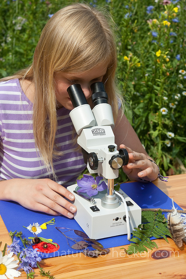 Kind, Mädchen, Kinder mit Binokular im Garten, Stereolupe, Lupe, betrachtet Pflanzendetails, Blüten