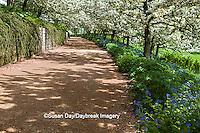 63821-22517 Walkway in spring at Chicago Botanic Garden, Glencoe., IL
