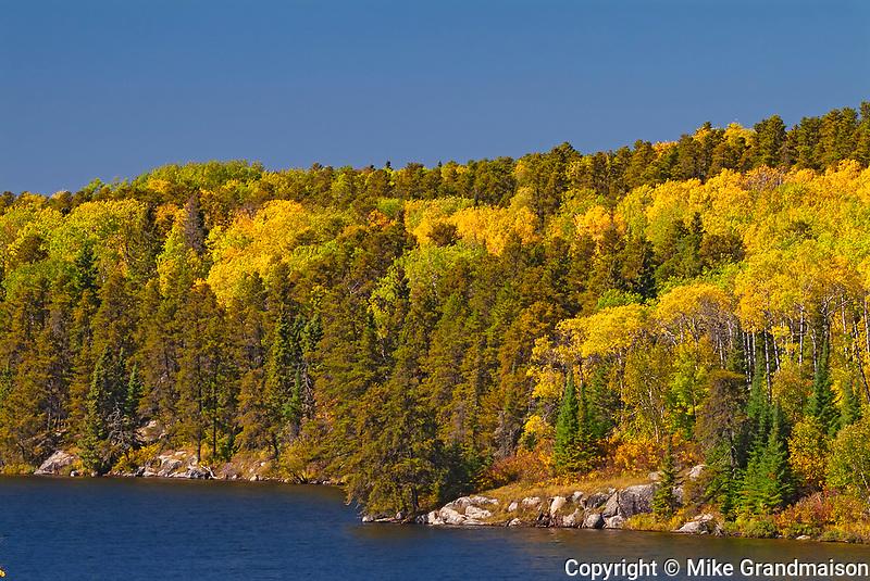 Autumn on Blinfold Lake<br />Near Kenora<br />Ontario<br />Canada