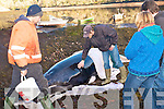 Efforts were undertaken by local fishermen to save the life of the Minke Whale which was beached at Blackwater pier last Friday. .Locals brought buckets of water and soaked sheets to try and rescue the animal.