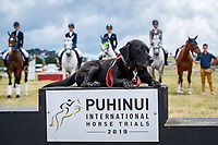 Podium Poser: during the Prizegiving for the Thompson Electrical CCN1*-L. 2019 NZL-Puhinui International Three Day Event. Puhinui Reserve. Auckland. Sunday 8 December. Copyright Photo: Libby Law Photography