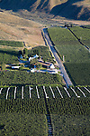 Orchards in the Bray's Landing area near Orondo, WA.  White fabric is a canopy system that covers cherry trees in the event of rain. 06/25/07, Douglas County.