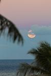 The supermoon as seen from Lahaina, Maui, Hawaii, USA