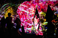 A walkway and hallway in Team Lab's Borderless digital museum in Tokyo, Japan, July, 2019 has moving animals and flowers projected onto the walls . The digital museum is one of Tokyo's most popular attractions and uses innovative digital audio-visual displays.